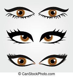 Different types of womens eyes