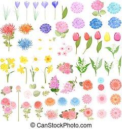 differente, bello, primavera, collezione, disegno, fiori, tuo