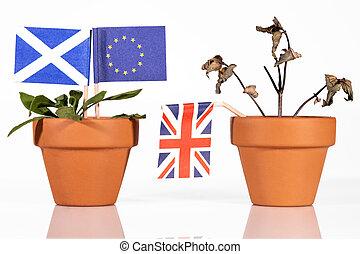 differente, concetto, impacts, fioriera, brexit, bandiere