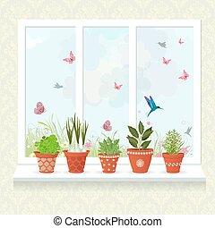 differente, erbe, piantato, in, ceramica, otri, su, uno, davanzale, per, tuo