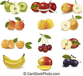 differente, frutta, gruppo, sorts