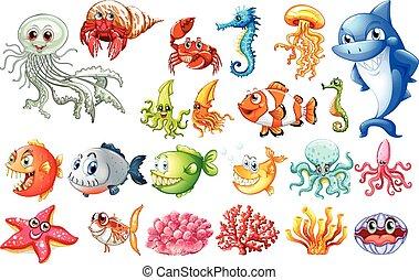 differente, generi, di, animali mare