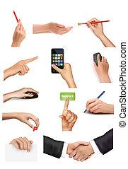 differente, illustrazione affari, vettore, collezione, tenere mani, objects.