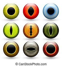differente, set, animali, occhi