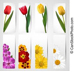 differente, set, flower., colorito, vettore, bandiere, illustration.