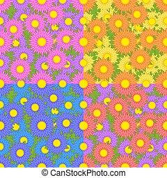 differente, set, rosa, modelli, viola, seamless, asters, arancia, colori, giallo, blu