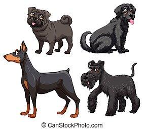 differente, tipo, di, cani