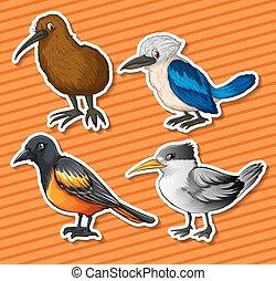 differente, tipo, di, uccelli