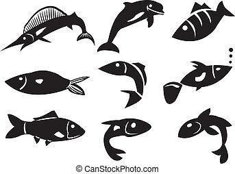 differente, vettore, fish, illustrazione