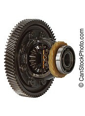 Differential of the gearbox, isolated on white background