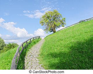 Difficult cobble stones upward path