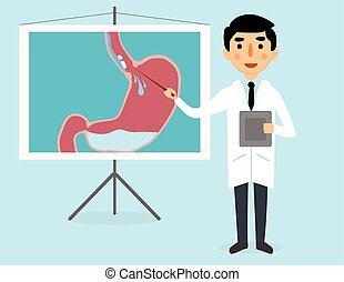 digestión, estómago, doctor, ilustración, vector, explica, píldora