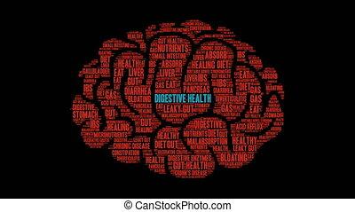 Digestive Health Word Cloud - Digestive Health word cloud on...