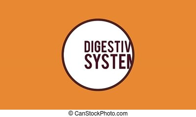 Digestive system concept HD animation - Gigesty system and...