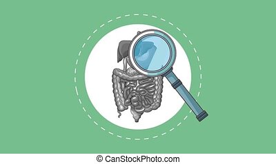 Digestive system concept HD animation - Magnifying glass...