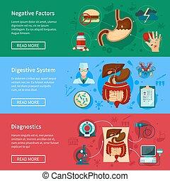 Digestive System Flat Banner Set