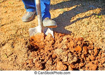digging dirt