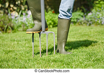 Digging fork - Woman aerating the garden lawn with a digging...