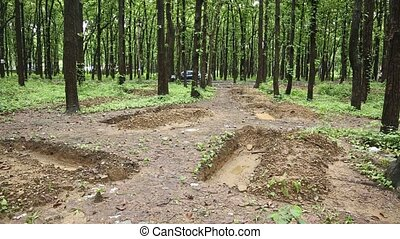 Digging holes can help regreen our planet and also the best way to conserve water in forests. Digging Wholes in Forest To Conserve Rain Water. High quality Full HD footage