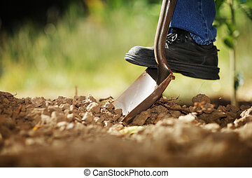 Digging spring soil with shovel. Close-up, shallow DOF.