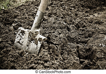 Digging the earth with a spade before planting.