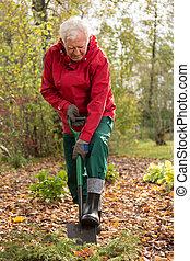 Digging the garden - Elderly hardworking man digging his...