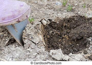 Digging up a little shovel