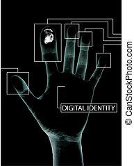 digitální, identita