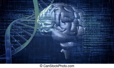 Digital animation of a brain and DNA helix rotating in the ...