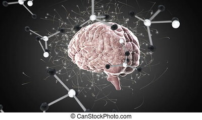 Digital animation of a brain and molecules - Full view of a ...