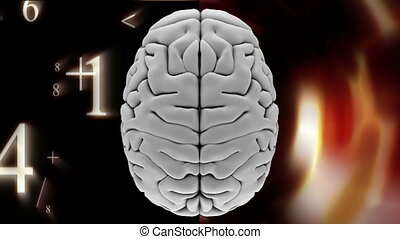 Digital animation of brain with numbers falling down