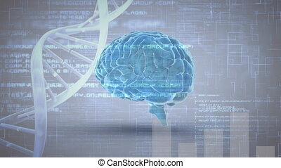 Digital brain and DNA helix with program codes - Digital ...
