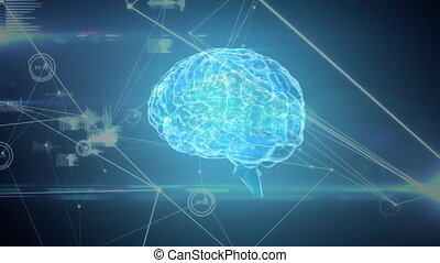 Digital brain with a network of graphs