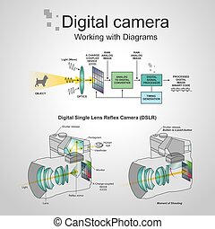 Digital camera dslr - A digital single-lens reflex camera is...