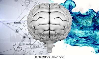 Digital composite of brain