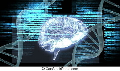 Digital composite of human brain and DNA helix