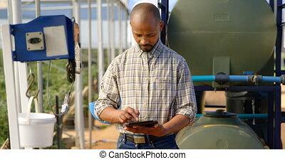 digital, granja, utilizar, tableta, hombre, 4k, arándano