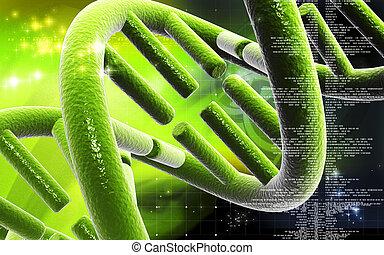 DNA - Digital illustration DNA structure in colour ...