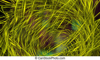 Digital Illustration of a mystic Swirl