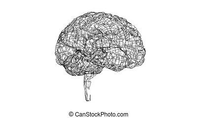 Digital lines create human brain shape, digital concept. Scan concept. 3d illustration