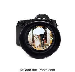 Digital photo camera with groom and bride - Digital photo...