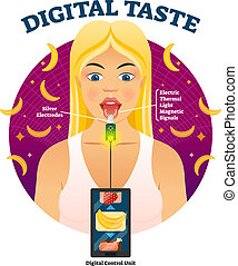 Digital taste vector illustration. Explained gustation...