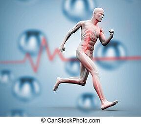 digitale, correndo, cifra, scheletro