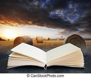 digitale, libro, aperto, balle, immagine, tramonto, concetto, ora dorata, paesaggio, composito, wth, bello, fieno