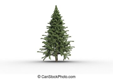 Digitally generated green fir tree on white background