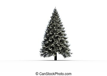 Digitally generated snowy fir tree on white background