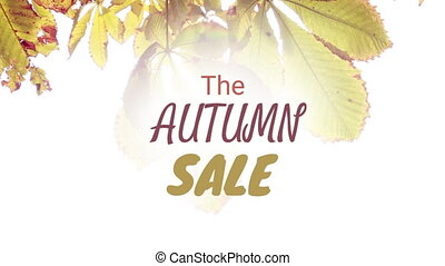 Digitally generated video of autumn sale 4k