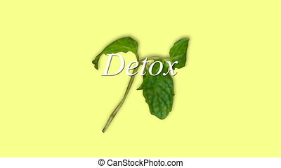 Digitally generated video of detox concept