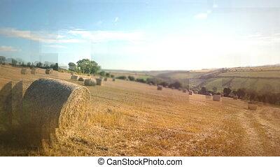 Digitally generated video of hay in the field 4k - Digitally...