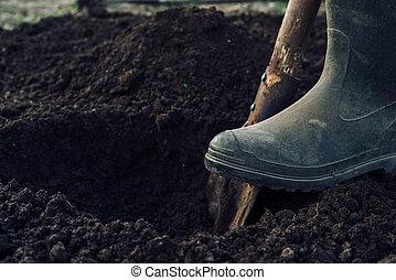Digs a hole